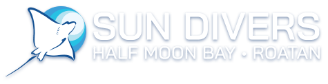 PADI Open Water Certification | Dive Courses in Roatan