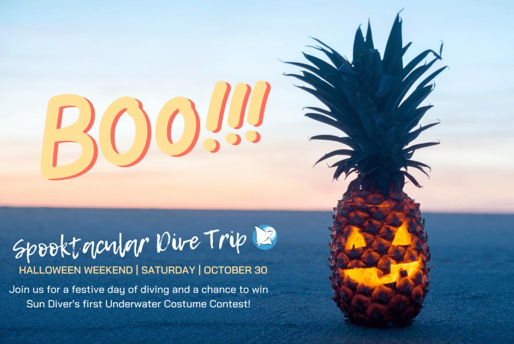 Halloween Event & Contest
