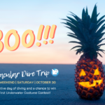 Read More: Halloween Event & Contest